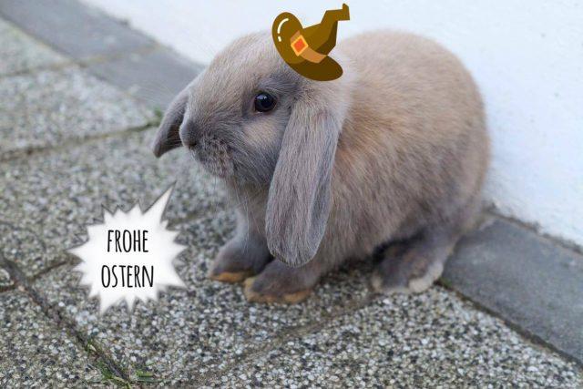 FROHE OSTERN #dieschönstenhasen