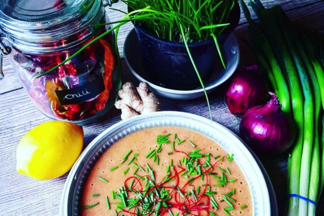 Gericht des Monats November // Karotten-Rote-Beete-Pastinaken-Creme-Süppchen
